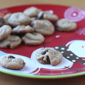 Peanut Butter Chocolate Chip Cookie Bites – Grain Free