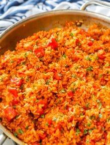 Spanish Rice is a terrific side dish for any meal.