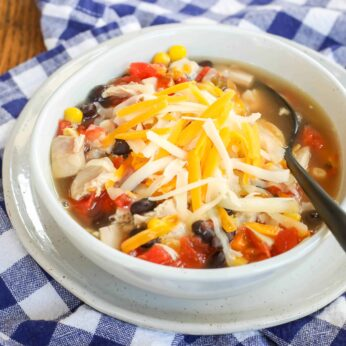 {10 Minute} Southwest Chicken Soup