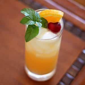 St-Germain Citrus Splash