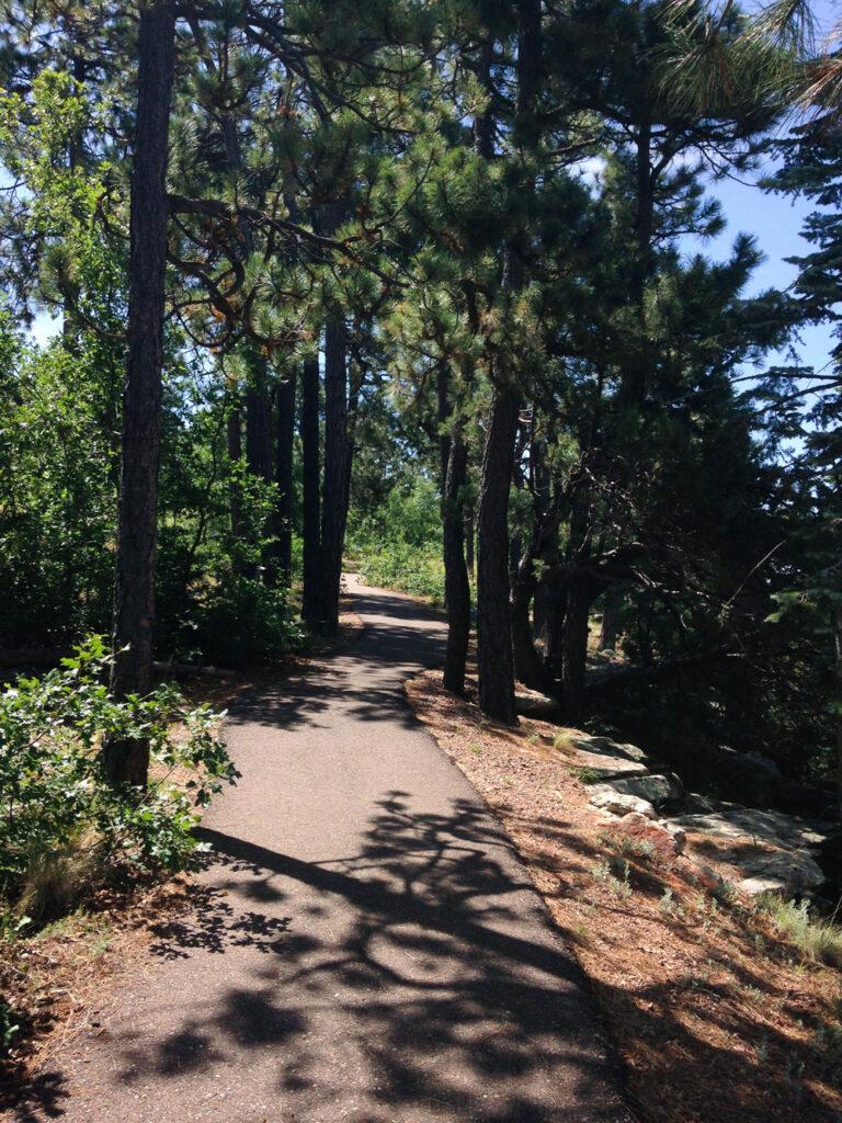 Hiking Trail - Mogollon Rim, Sitgreaves National Forest, AZ