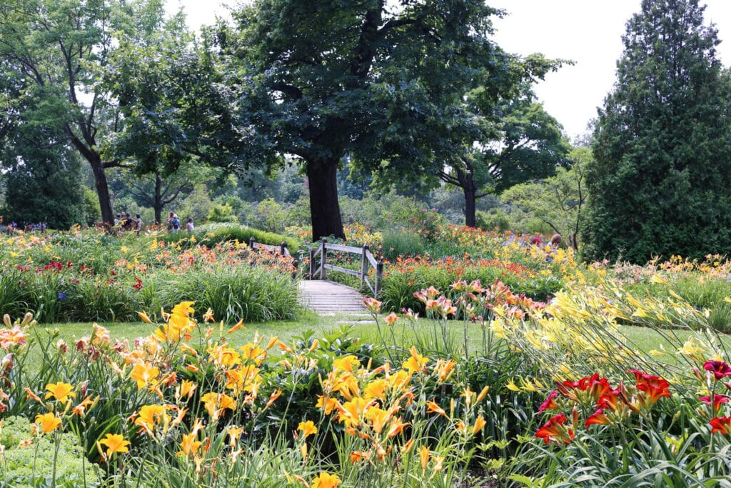 Take a peek into Montreal's Botanical Garden ~ travel photos by Barefeet In The Kitchen