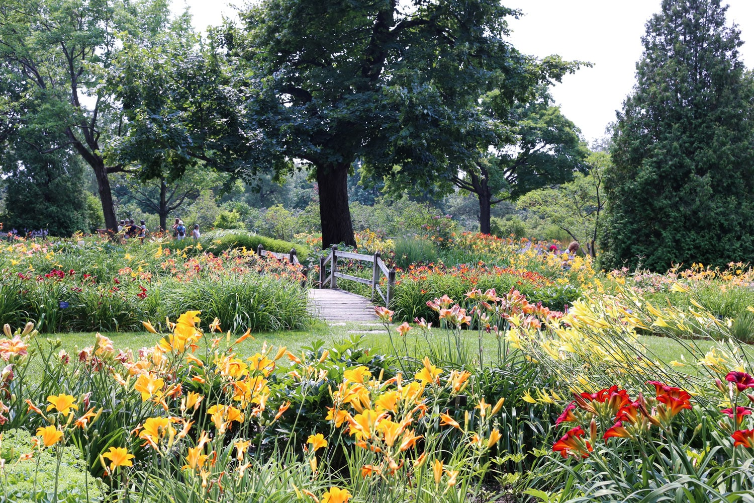 Montreal 39 s botanical garden for Botanical gardens hours today