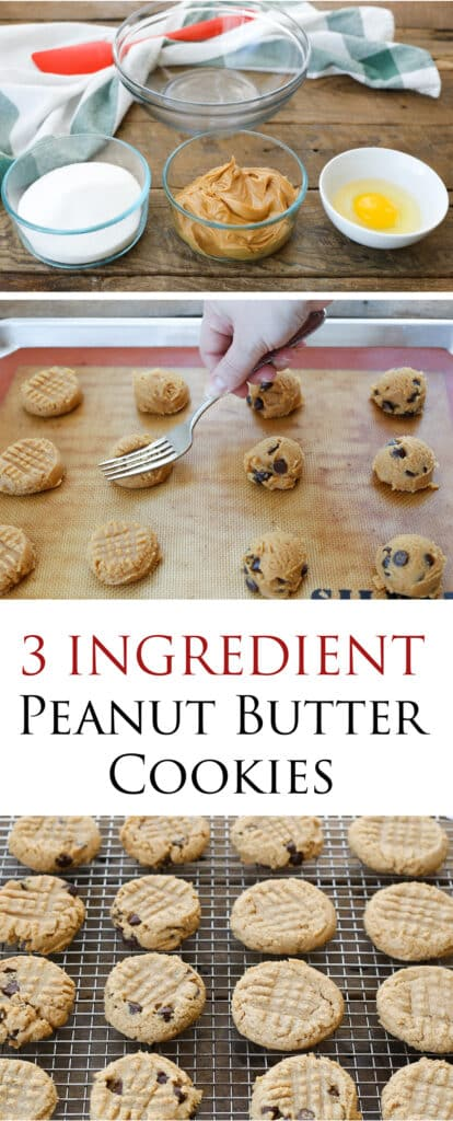 Three Ingredient Peanut Butter Cookies are so simple, you can make them in minutes! get the easy recipe at barefeetinthekitchen.com