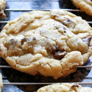 Favorite Chocolate Chip Cookies