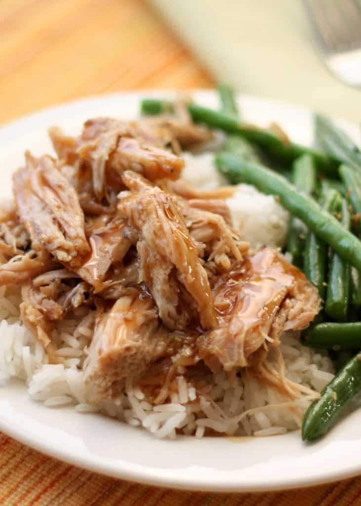 Slow Cooker Tangy Pork Roast {Barefeet in the Kitchen}