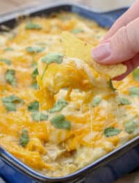 No one can resist these 30 Minute Green Chile Chicken Enchiladas! get the recipe at barefeetinthekitchen.com