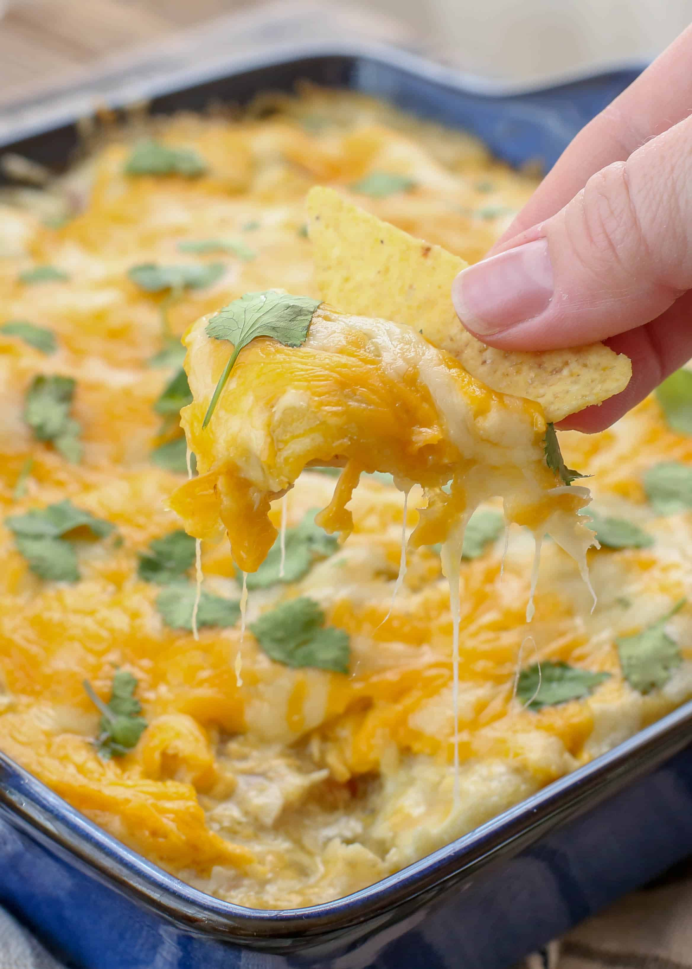 30 Minute Green Chile Chicken Enchiladas Barefeetinthekitchen Com