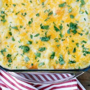 Green Chile Chicken Enchiladas are a family favorite!