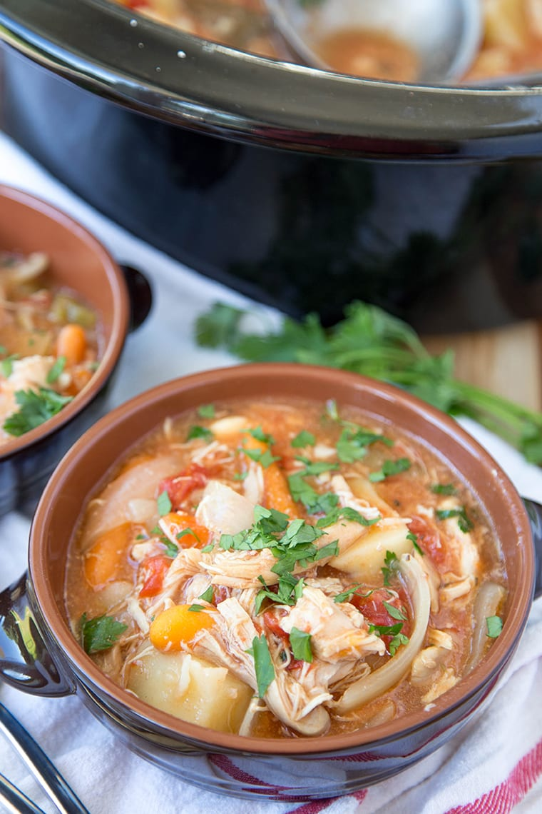 Slow Cooker Chicken Stew {Yellow Bliss Road}