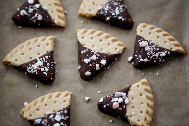 chocolate-candy-cane-shortbread-2-1-of-1