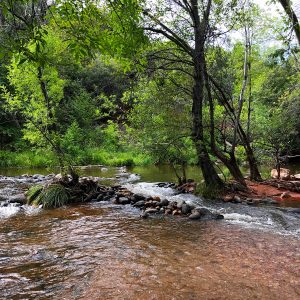 Sedona, AZ - Oak Creek River