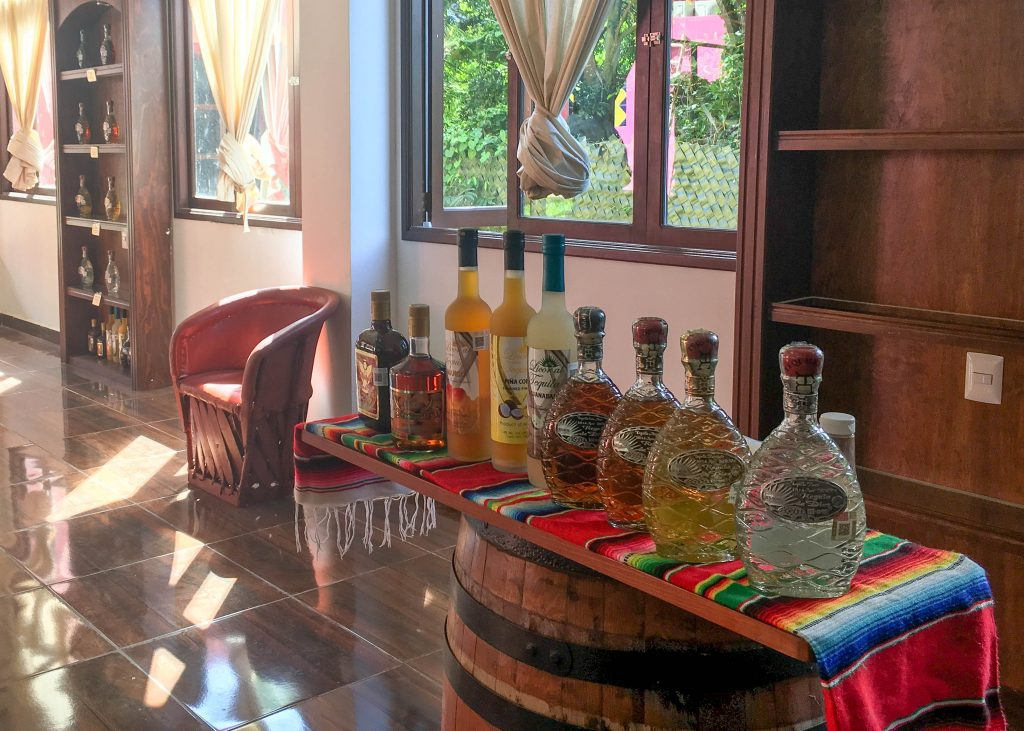 Tequila Tasting in Cozumel, Mexico