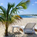 Things to do in Cozumel!