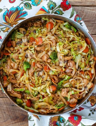 Stir Fried Noodles with Chicken and Vegetables - get the recipe at barefeetinthekitchen.com