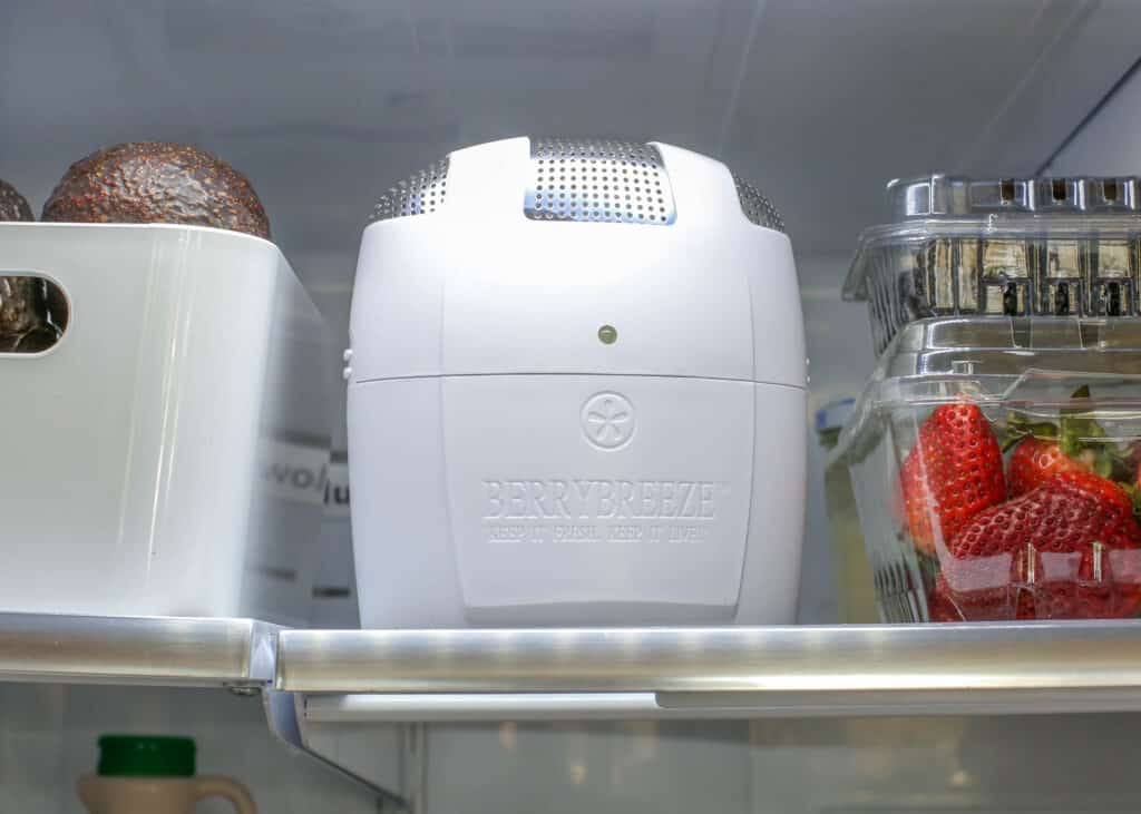 FRIDGEFRESH keeps produce fresh for longer AND reduces fridge odors. I love mine!