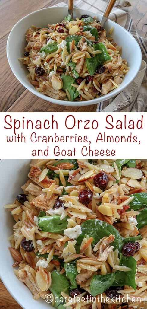 Spinach Pasta Salad with Cranberries, Almonds, and Goat Cheese is loaded with flavor! - get the recipe at barefeetinthekitchen.com