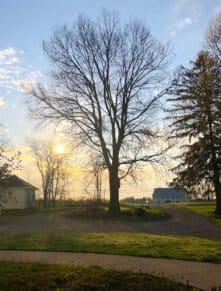 ohio morning sunshine